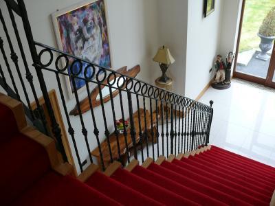 red-carpet-020